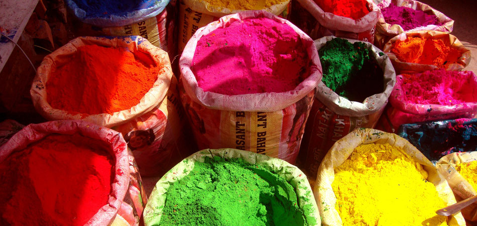 Rustik_Travel-Holi-in-jaipur