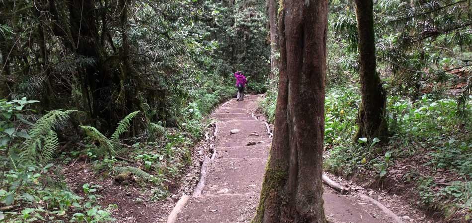 En route Kilimanjaro