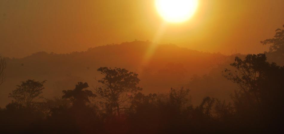Wild Assam_Rustik Travel