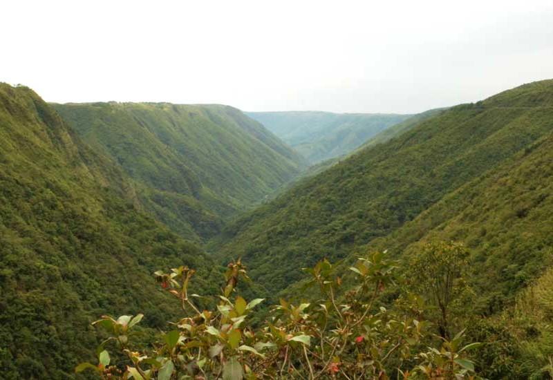 Meghalaya_Rustik Travel